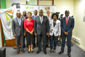 Gapi's Corporate Bodies Renewed